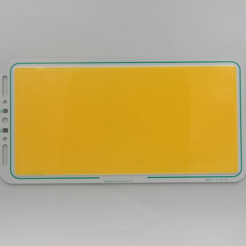 160W LED COB Light Module 220*113mm DC 12V 13A Warm White / White