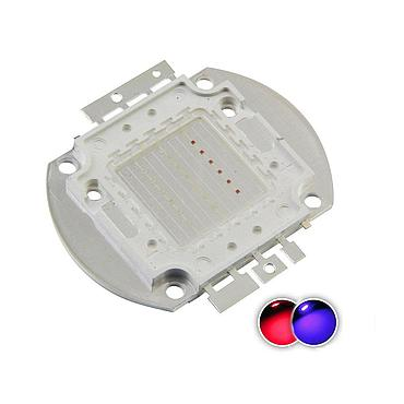 20W High Power LED Emitter Color Red/Blue
