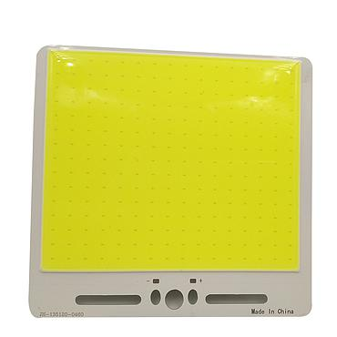 50W LED COB Light Module 123*93mm DC 12V 4000mA Warm White / White
