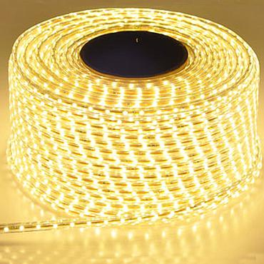 220V 2835 SMD Waterproof Led Strip Light with EU Plug 60Leds/m 120 Leds/m High Brightness Outdoor Indoor Decoration
