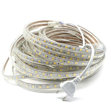 220V SMD 5050 Led Strip Light 220V Power Plug White Warm White 60leds/m Waterproof IP66 Led Strips